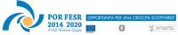 edit POR-FESR: BioSafe-BIOfilm Sensing and Analysis For hEalth