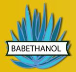 edit FP7 - BABETHANOL- New feedstock and innovative transformation process for a more sustainable development and production of lignocellulosic ethanol.